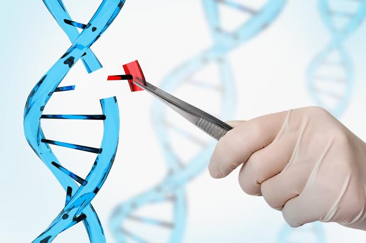 CRISPR:Cas9 Gene Editing